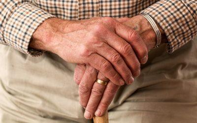 Importantes actualizaciones en materia de Seguridad Social